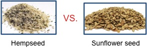 hemp vs sunflower