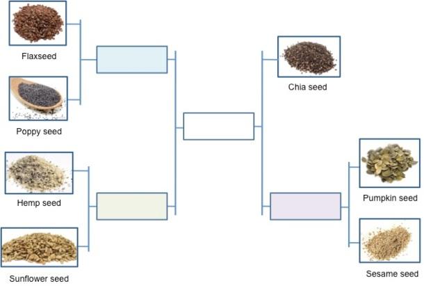 Tournament of Seeds