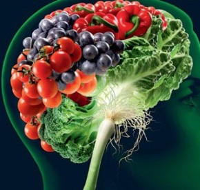 Brain Stew: Post Concussion Nutrition